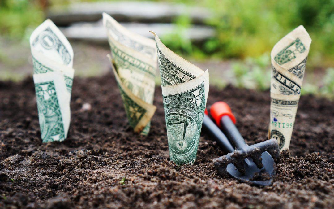 Dolar dosegnuo najvišu razinu u zadnja dva tjedna